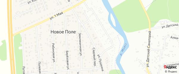 Улица Пушкина на карте деревни Нового Поля с номерами домов