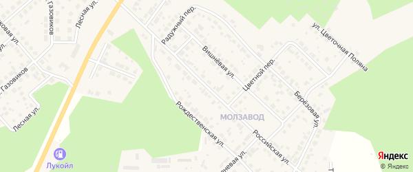 Российская улица на карте Долгодеревенского села с номерами домов