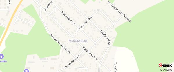 Невский переулок на карте Долгодеревенского села с номерами домов