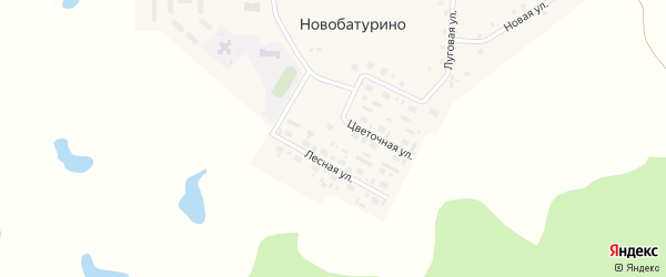Лесная улица на карте поселка Новобатурино с номерами домов