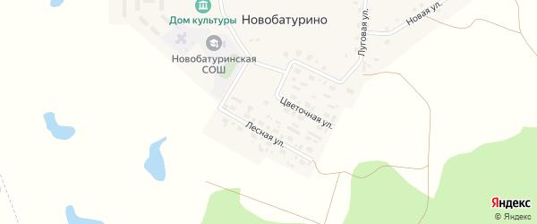 Солнечная улица на карте поселка Новобатурино с номерами домов
