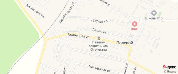 Солнечная улица на карте Полевого поселка с номерами домов