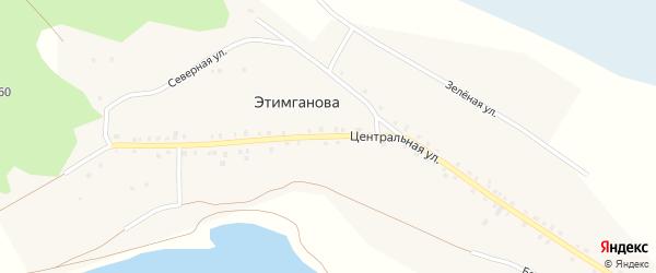 Центральная улица на карте деревни Этимганова с номерами домов