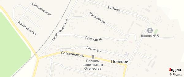 Прудная улица на карте Полевого поселка с номерами домов