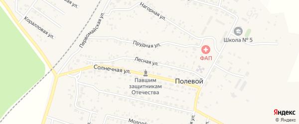 Лесная улица на карте Полевого поселка с номерами домов