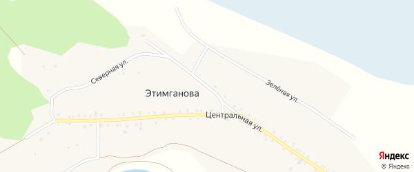 Северная улица на карте деревни Этимганова с номерами домов