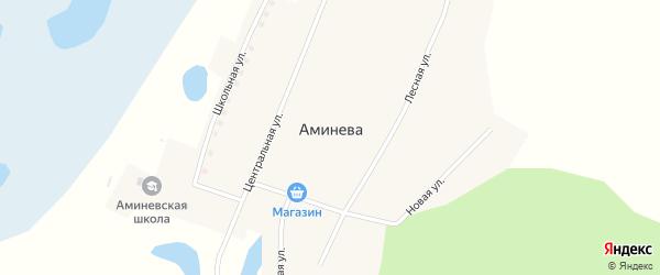 Центральная улица на карте деревни Аминева с номерами домов
