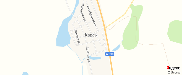 Карта села Карсы в Челябинской области с улицами и номерами домов