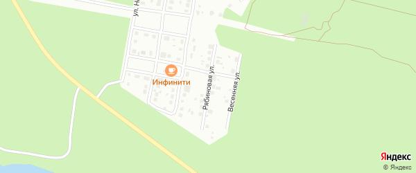 Рябиновая улица на карте садового некоммерческого товарищества Родника с номерами домов