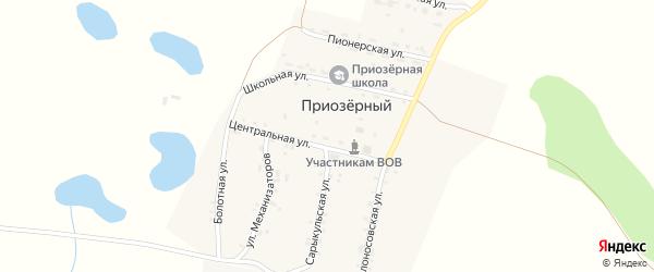 Центральная улица на карте Приозерного поселка с номерами домов
