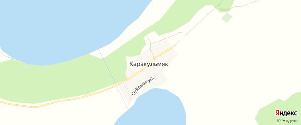 Карта деревни Каракульмяка в Челябинской области с улицами и номерами домов