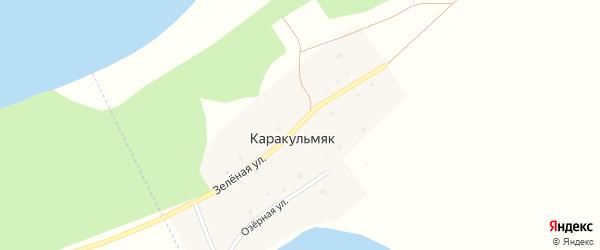 Зеленая улица на карте деревни Каракульмяка с номерами домов