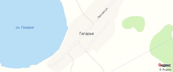 Лесная улица на карте деревни Гагарьего с номерами домов
