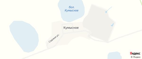 Карта поселка Кумысного в Челябинской области с улицами и номерами домов