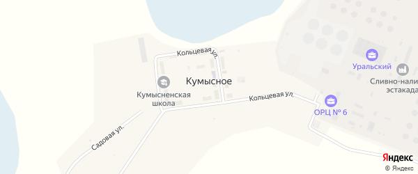 Кольцевая улица на карте поселка Кумысного с номерами домов