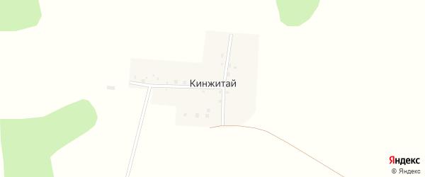 Центральная улица на карте поселка Кинжитая с номерами домов