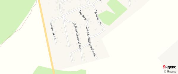 2-й Молодежный переулок на карте села Калачево с номерами домов