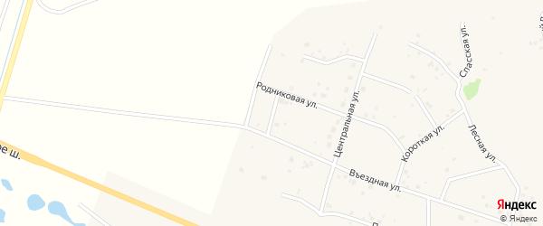 Западная улица на карте садового товарищества Лесная поляна с номерами домов