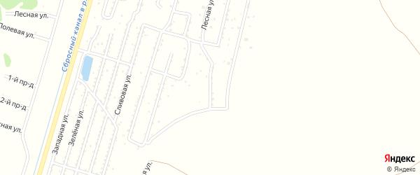 Пограничная улица на карте садового товарищества Лесная поляна с номерами домов