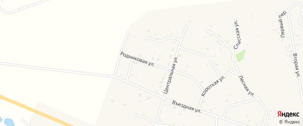 Родниковая улица на карте Петровского поселка с номерами домов