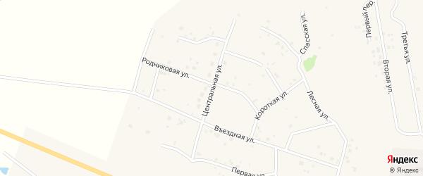 Центральная улица на карте садового товарищества Лесная поляна с номерами домов