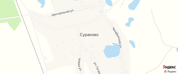 Центральная улица на карте деревни Сураково с номерами домов