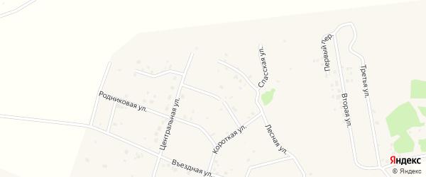 Березовая улица на карте садового товарищества Лесная поляна с номерами домов