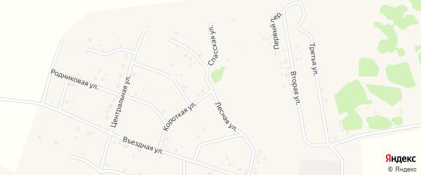 Лесная улица на карте садового товарищества Лесная поляна с номерами домов