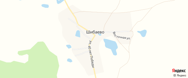 Карта села Шибаево в Челябинской области с улицами и номерами домов