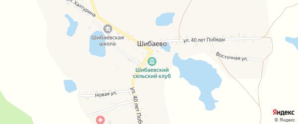 Улица 40 лет Победы на карте села Шибаево с номерами домов