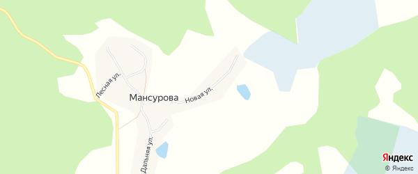 Карта деревни Мансурова в Челябинской области с улицами и номерами домов