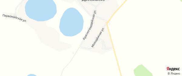 Карта села Дробышево в Челябинской области с улицами и номерами домов