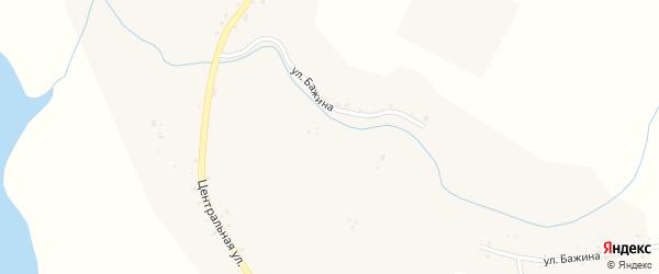 Центральная улица на карте села Шаблиша с номерами домов