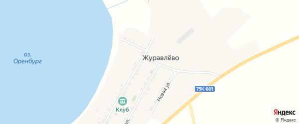 Улица Береговой на карте деревни Журавлево с номерами домов