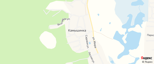 Карта деревни Камышинки в Челябинской области с улицами и номерами домов