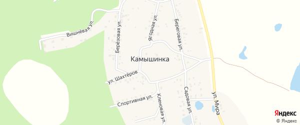 Береговая улица на карте деревни Камышинки с номерами домов
