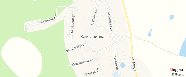 Ягодная улица на карте деревни Камышинки с номерами домов