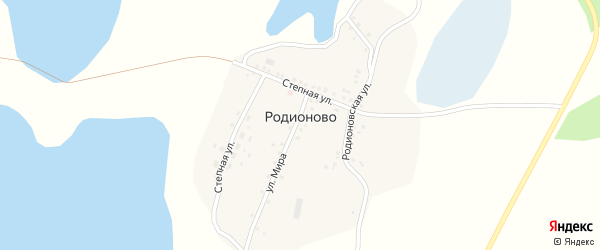 Степная улица на карте деревни Родионово с номерами домов