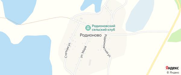 Родионовская улица на карте деревни Родионово с номерами домов