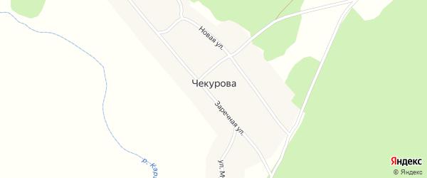 Центральная улица на карте деревни Чекурова с номерами домов
