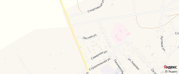 Лесная улица на карте Мирного поселка с номерами домов