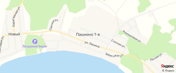 Карта деревни Пашнино 1-е в Челябинской области с улицами и номерами домов