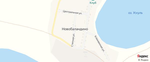 Клюквенная улица на карте деревни Новобаландино с номерами домов