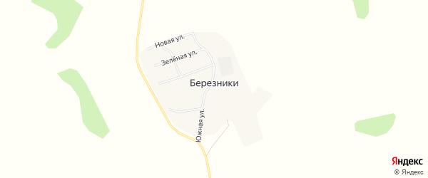 Карта поселка Березников в Челябинской области с улицами и номерами домов