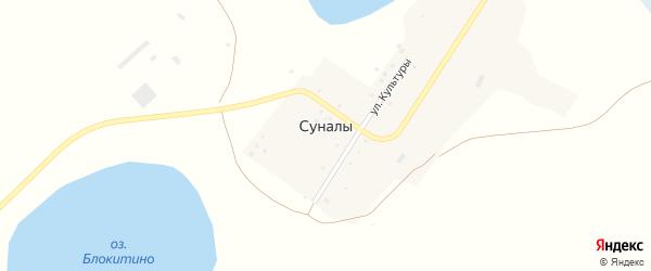 Улица Культуры на карте поселка Суналы с номерами домов