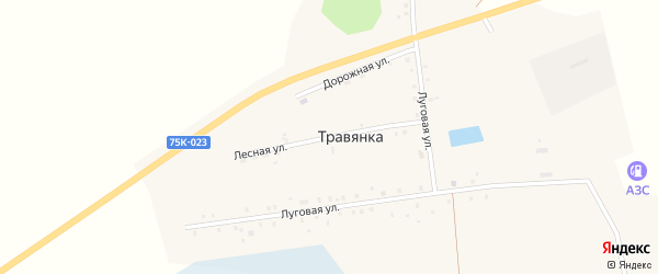 Лесная улица на карте села Травянки с номерами домов