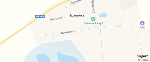 Луговая улица на карте села Травянки с номерами домов