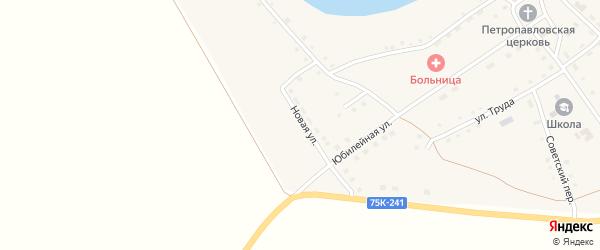 Новая улица на карте Петровского села с номерами домов