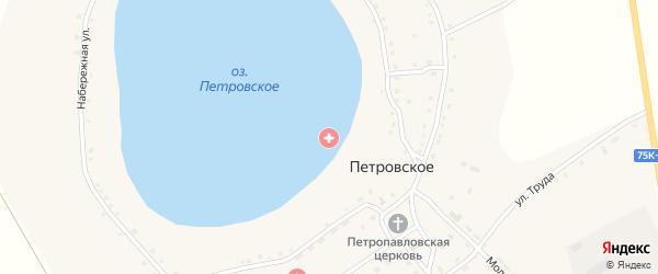 Красноармейская улица на карте Петровского села с номерами домов
