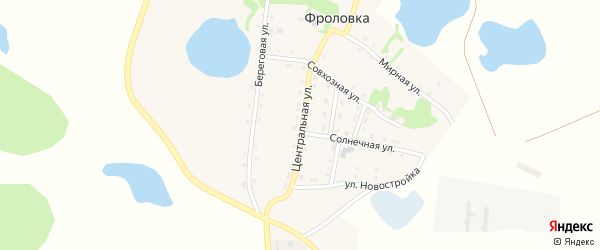 Центральная улица на карте деревни Фроловки с номерами домов